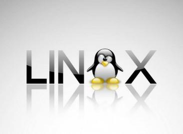 Linux İşletim Sisteminde Terminal Üzerinden Diğer Kullanıcıların Ekranına Bağlantı Sağlama
